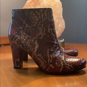 Sam Edelman Salina Brown/Natural Snakeskin bootie